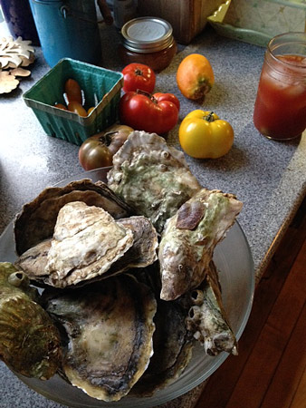 Oysters-huge-from-watch-Hill.jpg