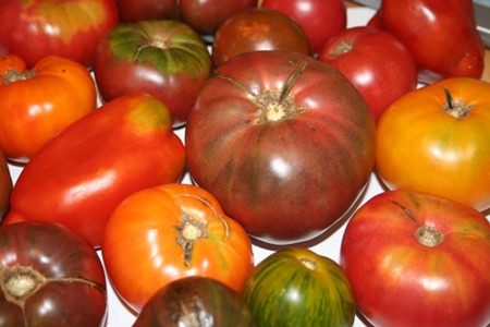 heirloom_tomatoes.jpg