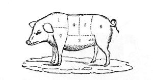 Pig-cuts023.png
