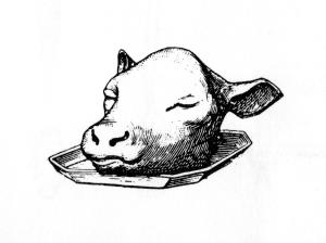 Calfs_head.jpg