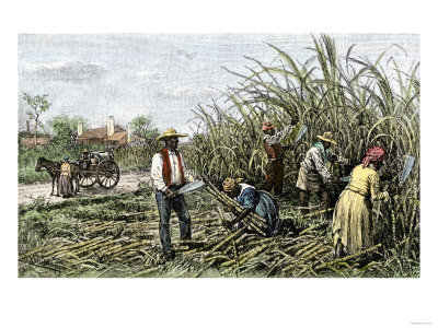 Plantation_in_us_south.jpg