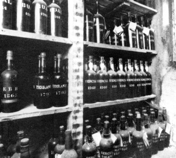 Madeira_vintage_bottles.jpg