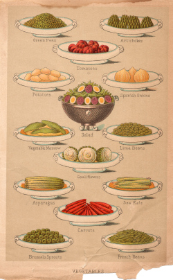 Mrs Beeton Recipes For Cakes