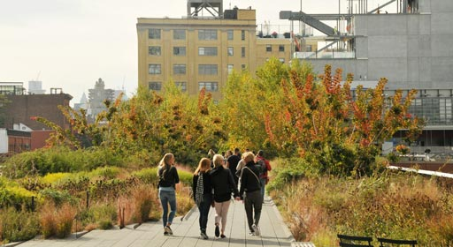 autumn-on-the-high-line_list_image.jpg