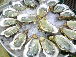 Oysters_on_ice.jpg