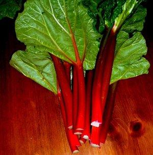 rhubarb_stalks.jpg