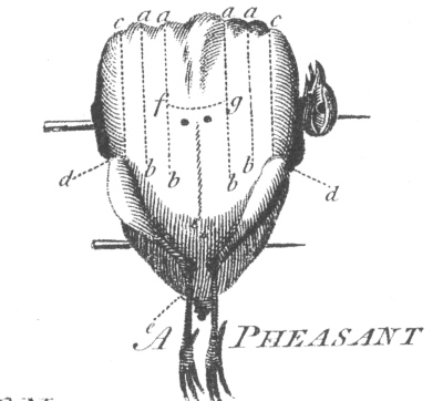 Pheasant parts