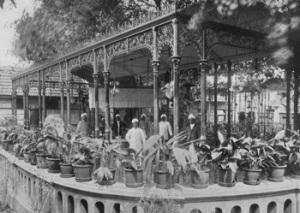 India_Raj_D-Angelis_Tea_Garden_Madrase_1906.jpg