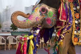 India_elephant.jpg